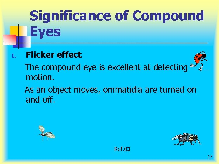 Significance of Compound Eyes 1. Flicker effect The compound eye is excellent at detecting