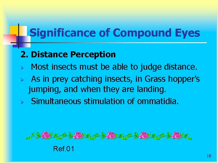 Significance of Compound Eyes 2. Distance Perception Ø Most insects must be able to