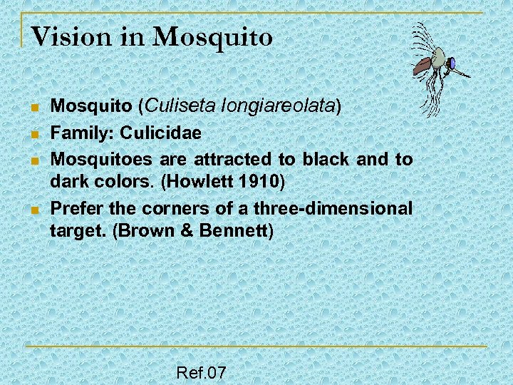Vision in Mosquito n n Mosquito (Culiseta longiareolata) Family: Culicidae Mosquitoes are attracted to