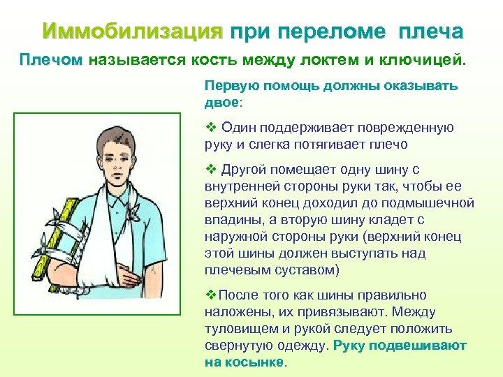Иммобилизация при переломе плеча Плечом называется кость между локтем и ключицей. Первую помощь должны