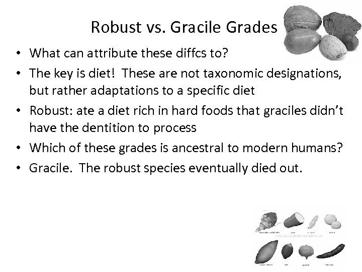 Robust vs. Gracile Grades • What can attribute these diffcs to? • The key