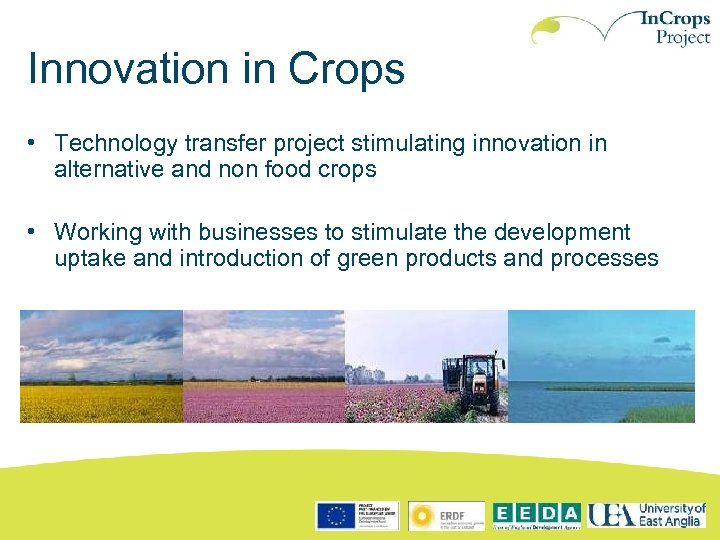 Innovation in Crops • Technology transfer project stimulating innovation in alternative and non food