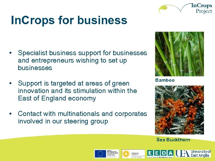 In. Crops for business • Specialist business support for businesses and entrepreneurs wishing to