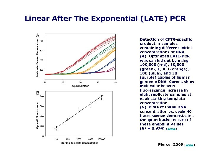 Linear After The Exponential (LATE) PCR Detection of CFTR specific product in samples containing