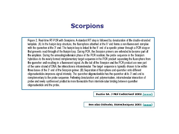 Scorpions Bustin SA. J Mol Endocrinol 2002 (www) See also Didenko, Biotechniques 2001 (www)