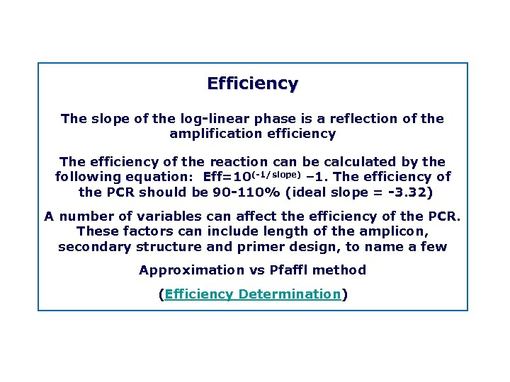 Efficiency The slope of the log linear phase is a reflection of the amplification