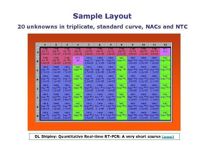 Sample Layout 20 unknowns in triplicate, standard curve, NACs and NTC DL Shipley: Quantitative