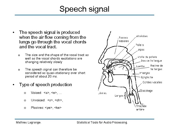 Speech signal • The speech signal is produced when the air flow coming from