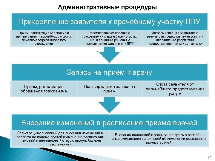 Административные процедуры Прикрепление заявителя к врачебному участку ЛПУ Прием, регистрация заявления о прикреплении к