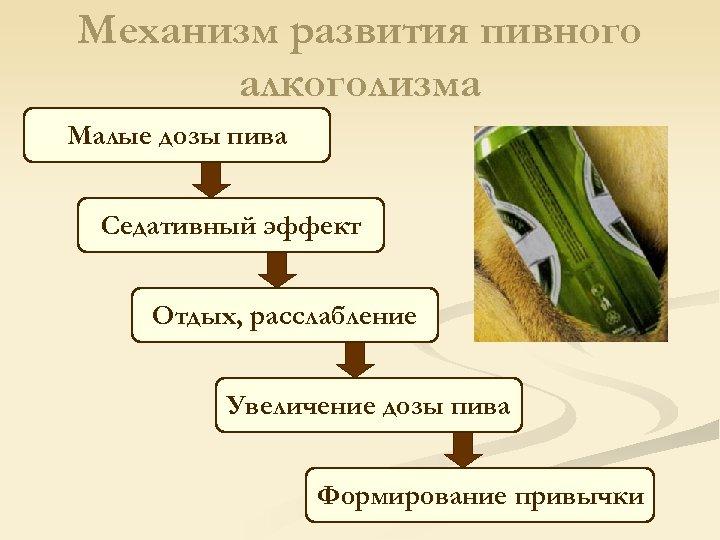 Механизм развития пивного алкоголизма Малые дозы пива Седативный эффект Отдых, расслабление Увеличение дозы пива