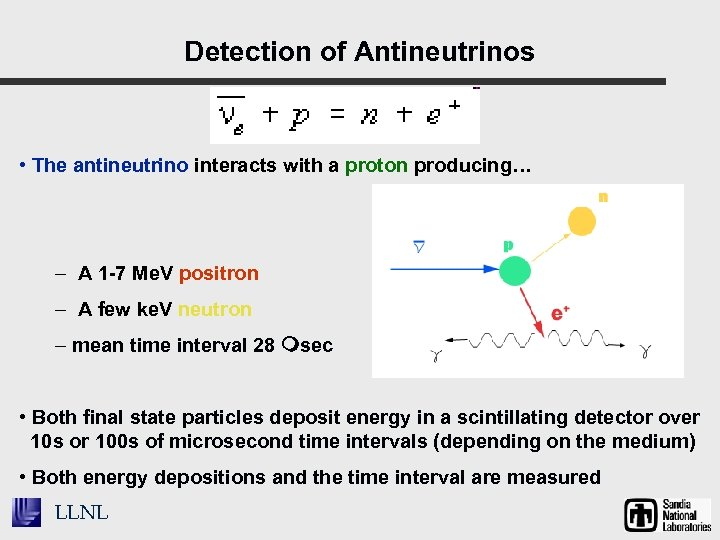 Detection of Antineutrinos • The antineutrino interacts with a proton producing… – A 1