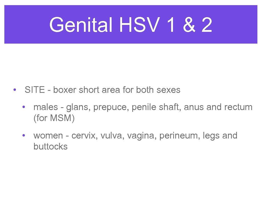 Genital HSV 1 & 2 • SITE - boxer short area for both sexes