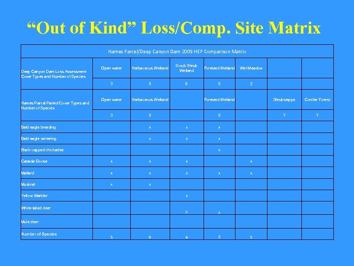 """Out of Kind"" Loss/Comp. Site Matrix Hames Parcel/Deep Canyon Dam 2009 HEP Comparison Matrix"