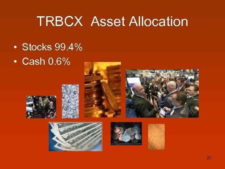 TRBCX Asset Allocation • Stocks 99. 4% • Cash 0. 6% 20