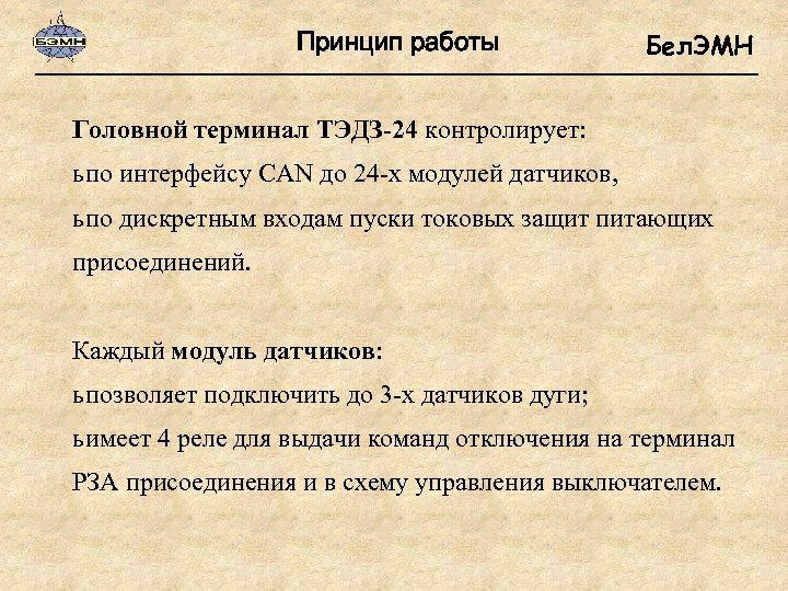 Принцип работы Бел. ЭМН Головной терминал ТЭДЗ-24 контролирует: ь по интерфейсу CAN до 24