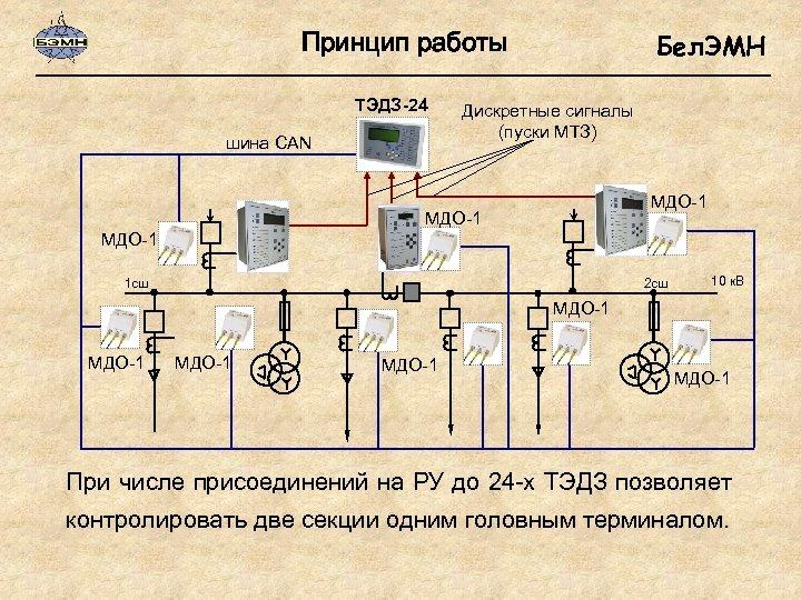 Принцип работы ТЭДЗ-24 шина CAN Бел. ЭМН Дискретные сигналы (пуски МТЗ) МДО-1 2 сш
