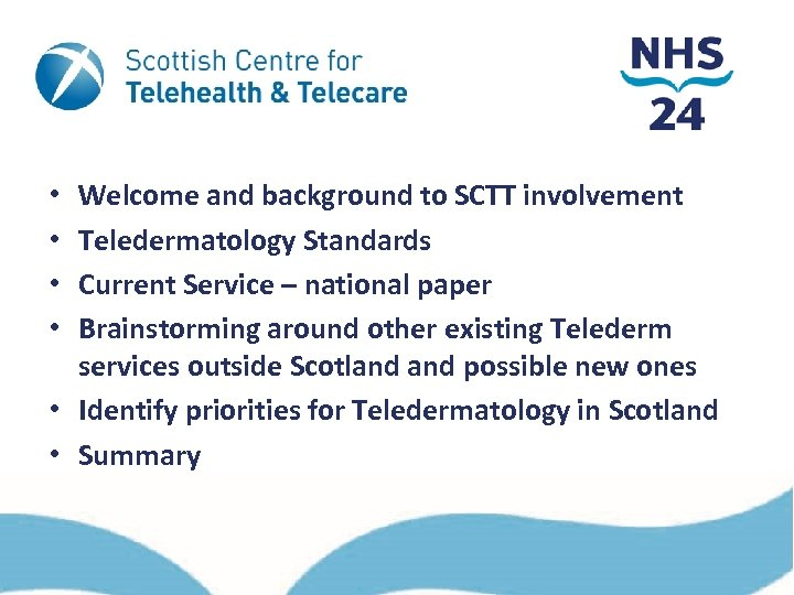 Welcome and background to SCTT involvement Teledermatology Standards Current Service – national paper Brainstorming