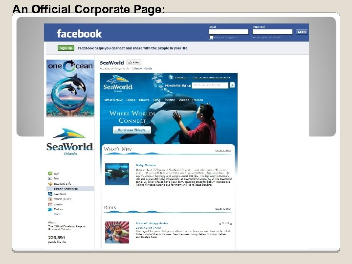 An Official Corporate Page: