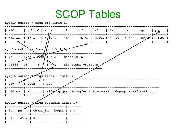 SCOP Tables mysql> select * from cla limit 1; +-----+---------+-------+-------+-------+-------+ | sid | pdb_id