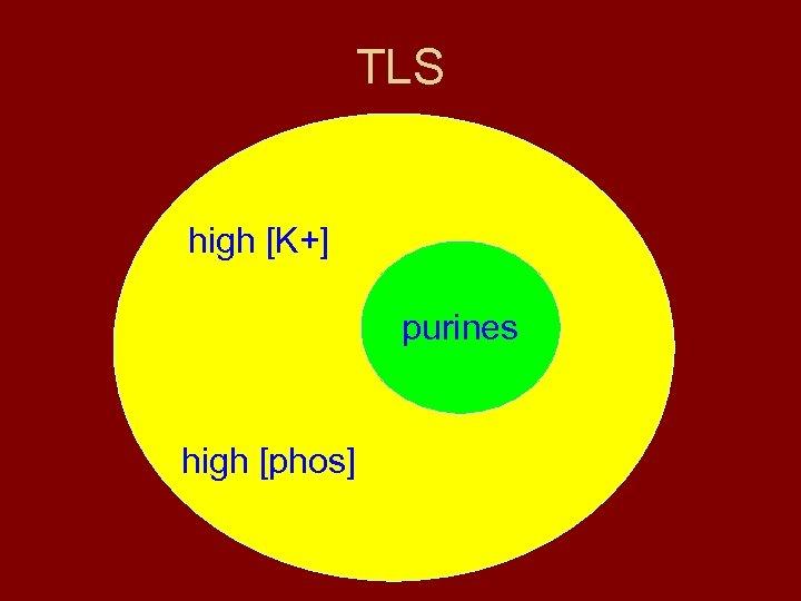 TLS high [K+] purines high [phos]