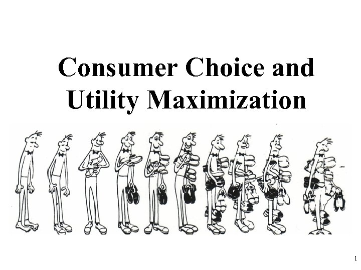 Consumer Choice and Utility Maximization 1