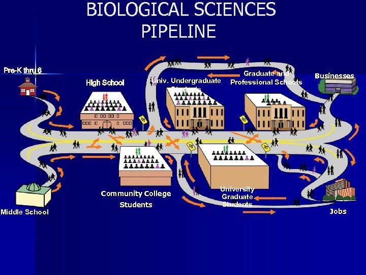 BIOLOGICAL SCIENCES Building NASA Pipeline PIPELINE K 9 Pre-K -thru 6 Students 10 -