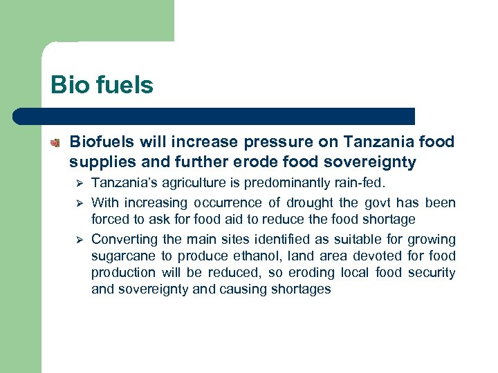 Bio fuels Biofuels will increase pressure on Tanzania food supplies and further erode food