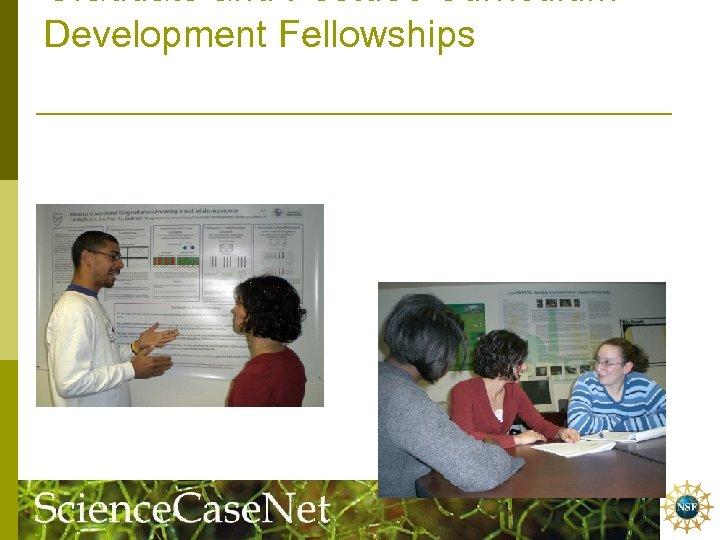 Graduate and Postdoc Curriculum Development Fellowships