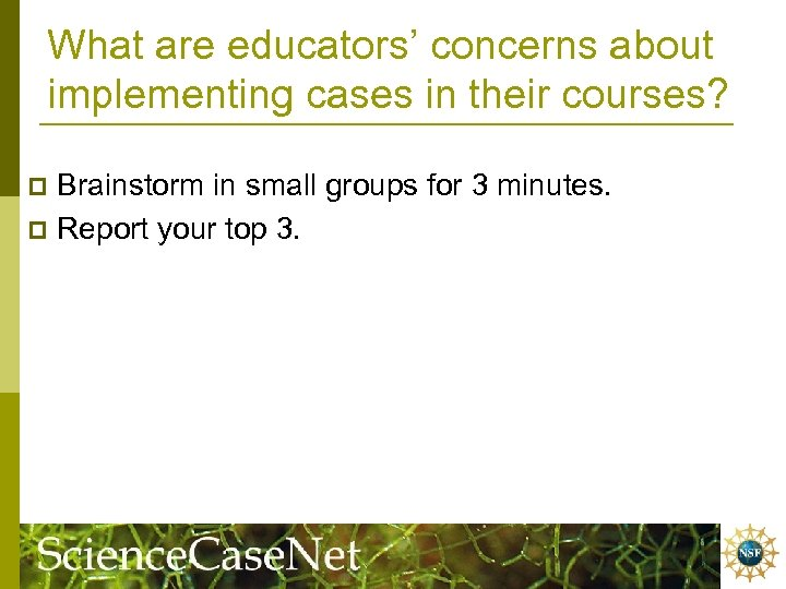 What are educators' concerns about implementing cases in their courses? Brainstorm in small groups