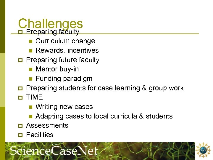 Challenges p Preparing faculty Curriculum change n Rewards, incentives Preparing future faculty n Mentor