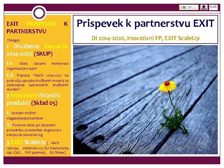 EXIT PRISPEVEK PARTNERSTVU K Obsega: 1 Družbene inovacije 2014 -2020 (SKUP) 1. 1 Obisk