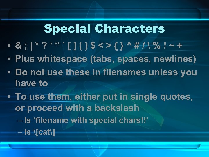 "Special Characters • &; |*? '""`[]()$<>{}^#/%!~+ • Plus whitespace (tabs, spaces, newlines) • Do"