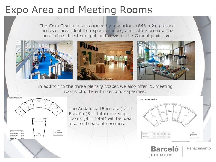 Expo Area and Meeting Rooms The Gran Sevilla is surrounded by a spacious (843