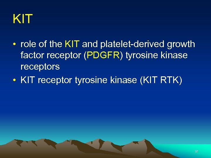 KIT • role of the KIT and platelet-derived growth factor receptor (PDGFR) tyrosine kinase