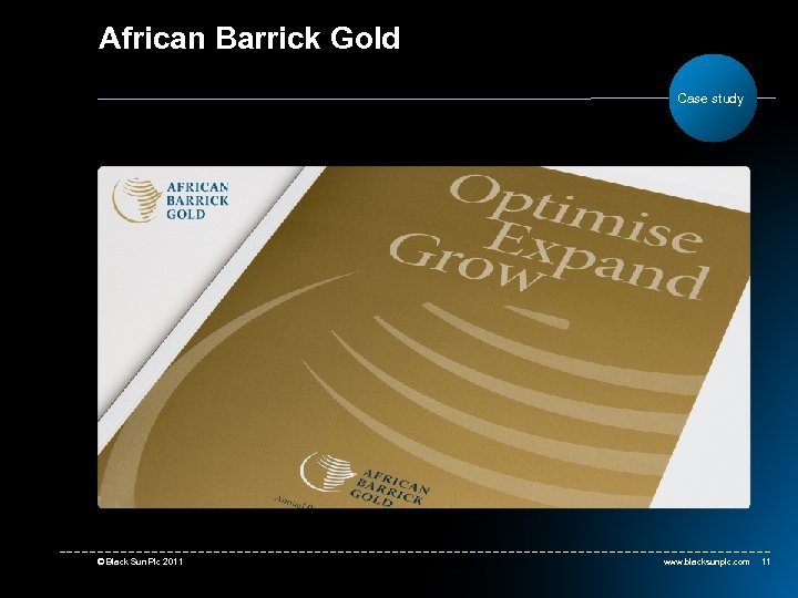 African Barrick Gold Case study © Black Sun Plc 2011 www. blacksunplc. com 11