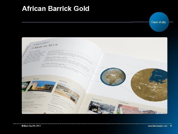 African Barrick Gold Case study © Black Sun Plc 2011 www. blacksunplc. com 16