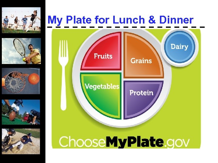 My Plate for Lunch & Dinner