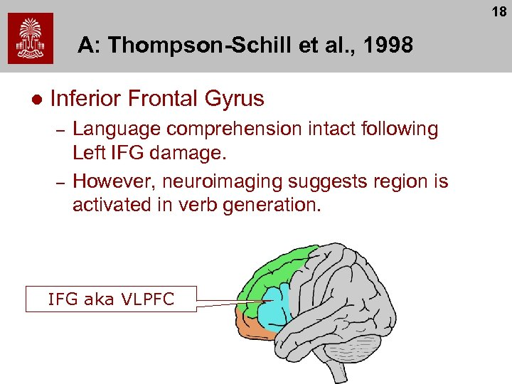 18 A: Thompson-Schill et al. , 1998 l Inferior Frontal Gyrus – – Language