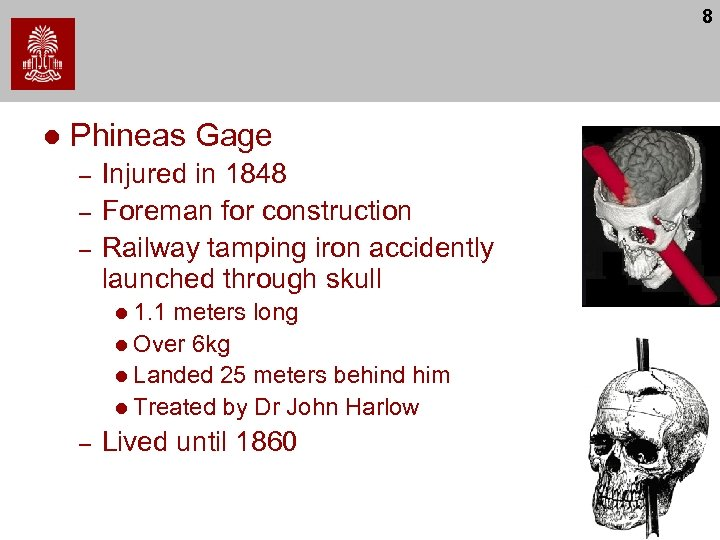 8 l Phineas Gage – – – Injured in 1848 Foreman for construction Railway
