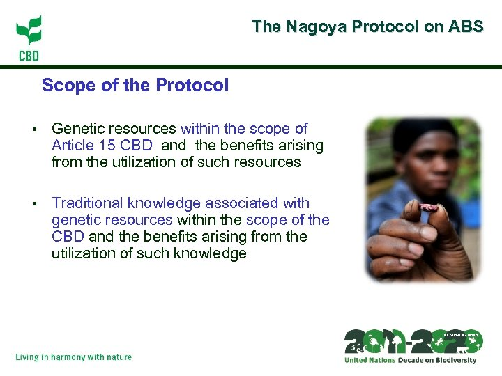The Nagoya Protocol on ABS Scope of the Protocol • Genetic resources within the