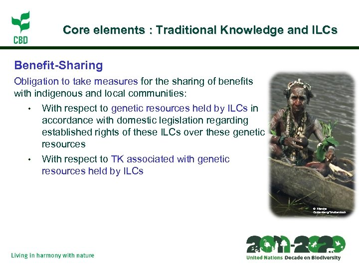 Core elements : Traditional Knowledge and ILCs Benefit-Sharing Obligation to take measures for the