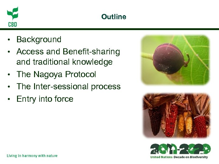 Outline • Background • Access and Benefit-sharing and traditional knowledge • The Nagoya Protocol