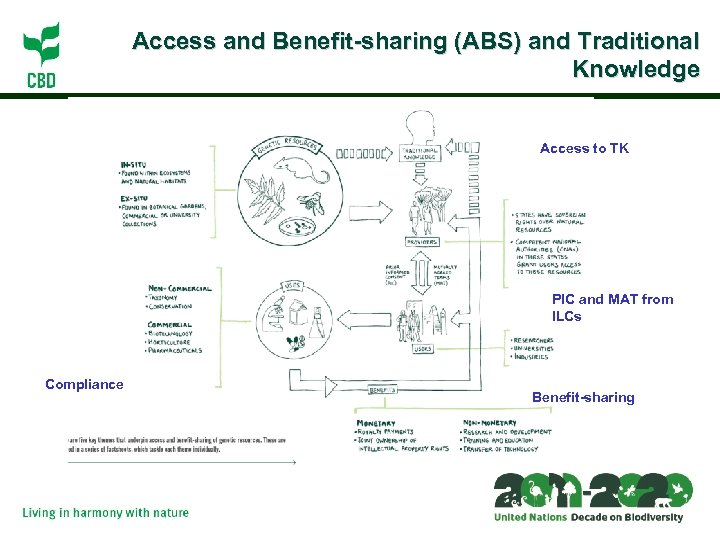 Access and Benefit-sharing (ABS) and ¿ The ? Traditional Knowledge Access to TK PIC