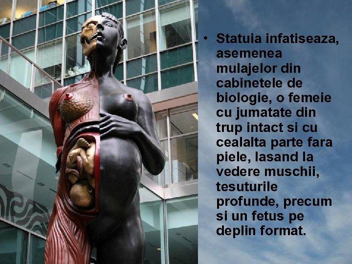 • Statuia infatiseaza, asemenea mulajelor din cabinetele de biologie, o femeie cu jumatate
