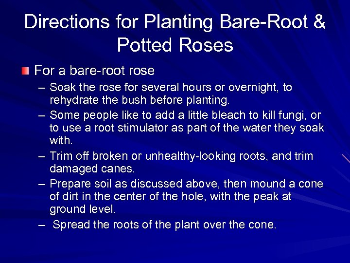 Directions for Planting Bare-Root & Potted Roses For a bare-root rose – Soak the