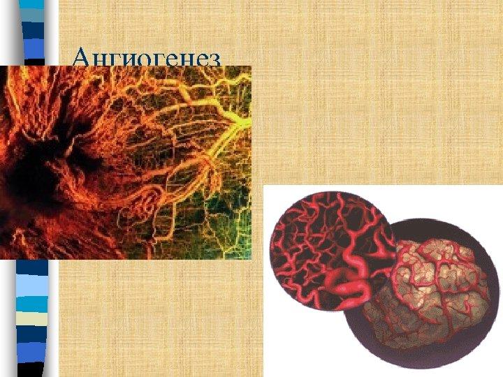Ангиогенез