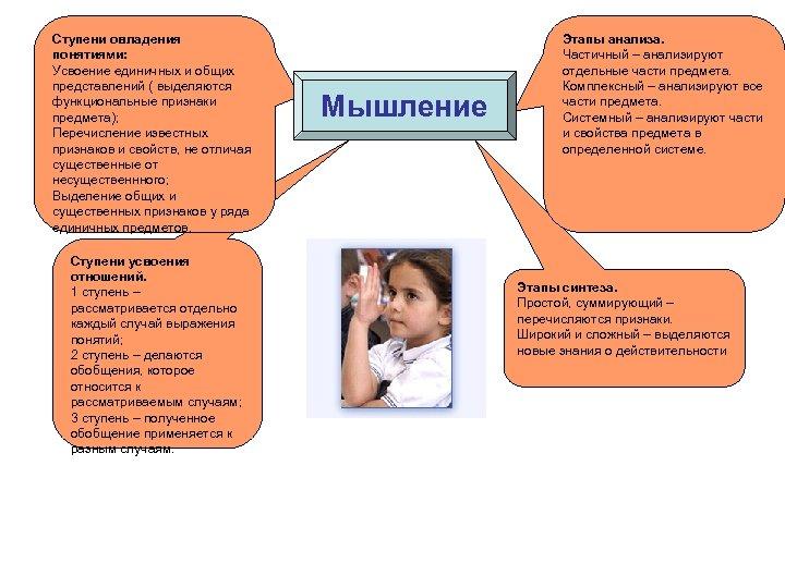 Ступени овладения понятиями: Усвоение единичных и общих представлений ( выделяются функциональные признаки предмета); Перечисление