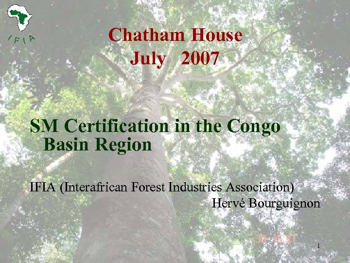 Chatham House July 2007 SM Certification in the Congo Basin Region IFIA (Interafrican Forest