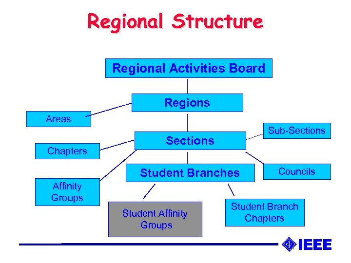 Regional Structure Regional Activities Board Regions Areas Chapters Sub-Sections Student Branches Affinity Groups Student