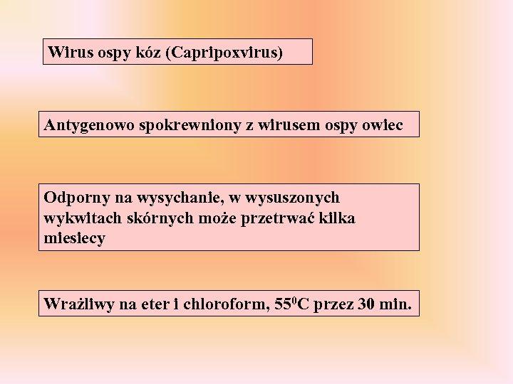 Wirus ospy kóz (Capripoxvirus) Antygenowo spokrewniony z wirusem ospy owiec Odporny na wysychanie, w